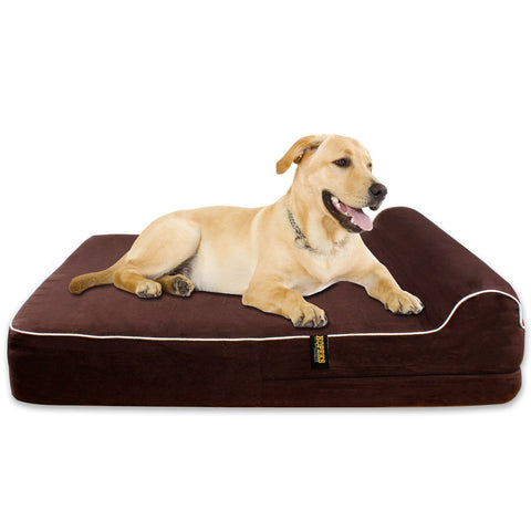 Best Dog Bed For Labs