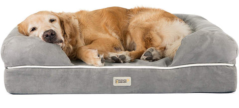 top Dog Beds For Labs