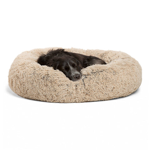 Best Dog Beds For Labrador