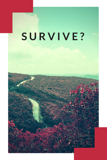 The Meaning of Survival & Why We Care