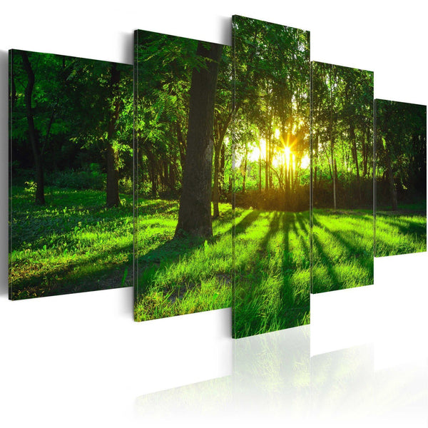 Quadro su tela - Morning in the forest