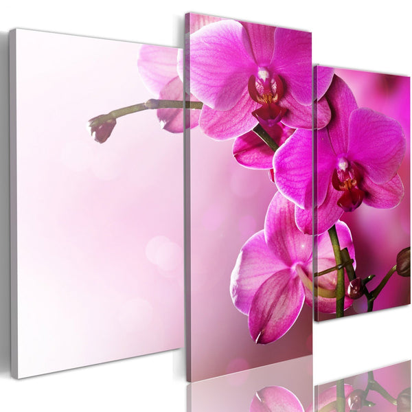 Quadro su tela - Orchidea color rosa scuro
