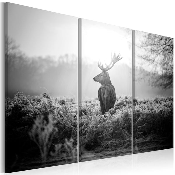 Quadro moderno su tela - Black and White Deer I