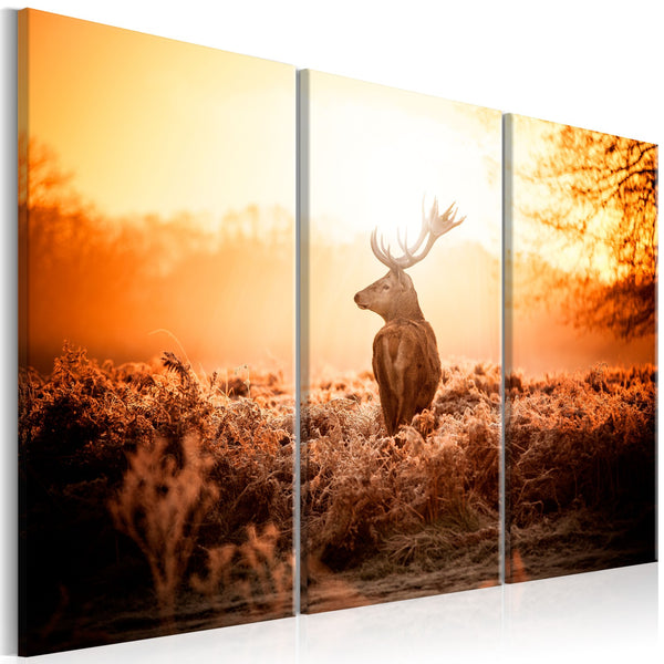 Quadro moderno su tela - Deer in the Sun I