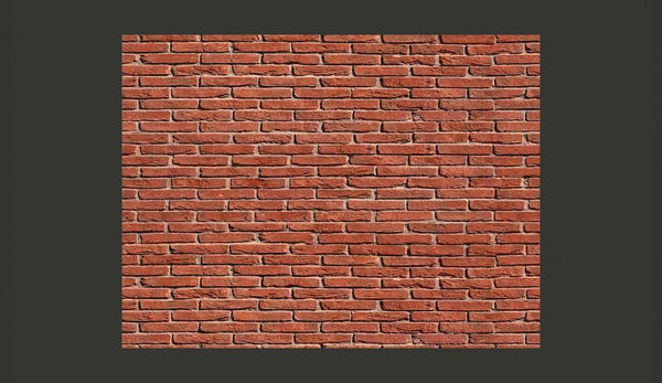 Carta da parati effetto mattoni - Brick - simple design