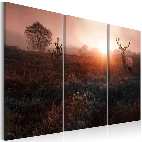 Quadro moderno su tela - Deer in the Sunshine I