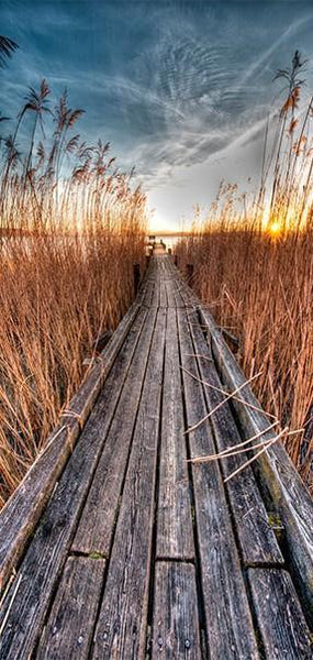 Carta da parati per porte - Photo wallpaper - Pier on the lake I