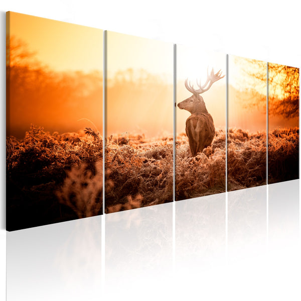 Quadro moderno su tela - Deer at Sunset