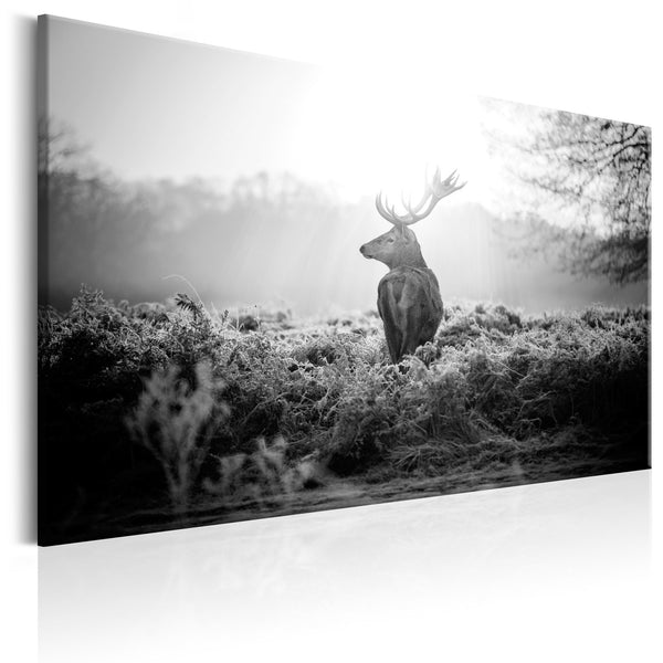 Quadro - Black and White Deer
