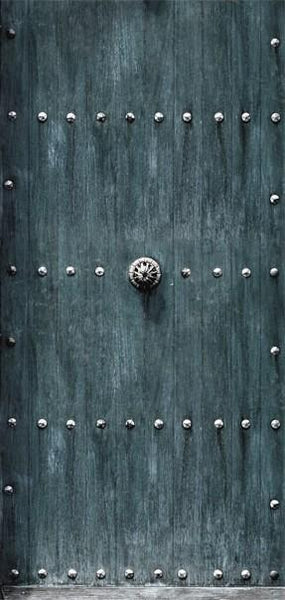 Carta da parati per porte - Stylish Door