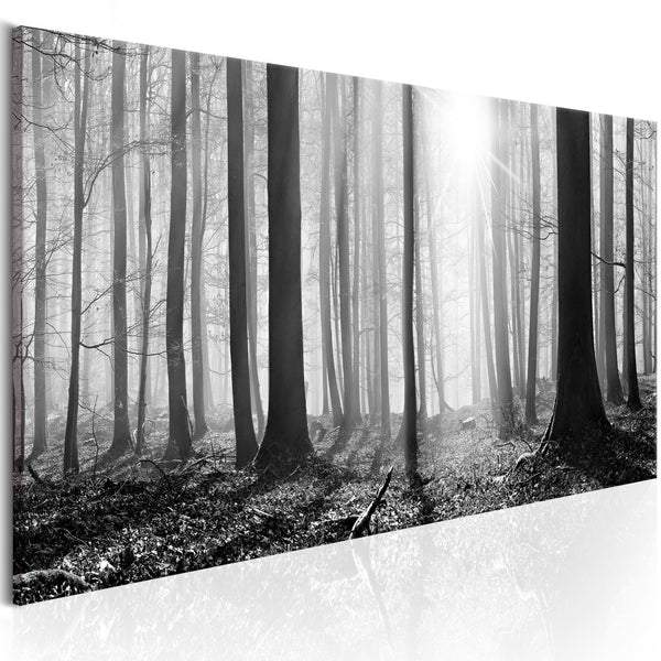 Quadro - Black and White Forest