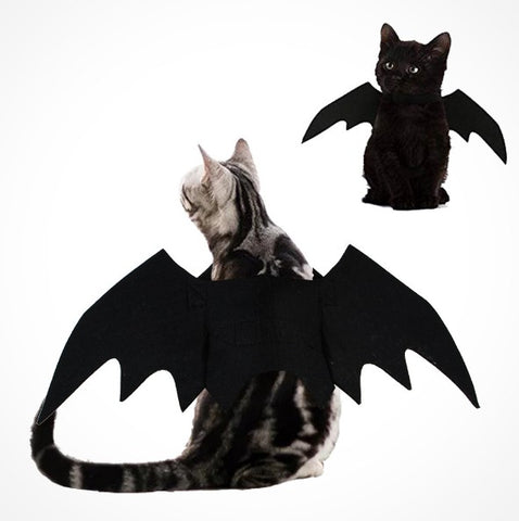 2019 Halloween Pet Costumes Bat Wings - Black