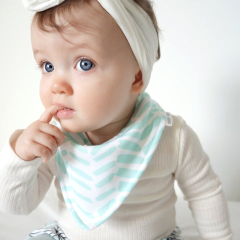 Mint Brush bandana bib