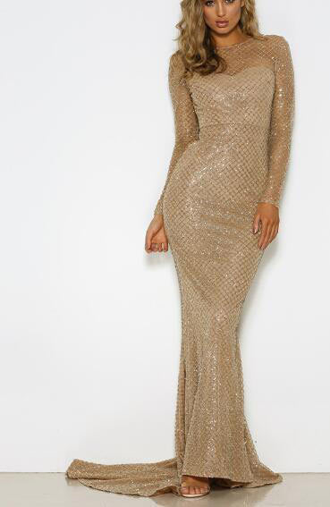Elegant Sexy Glitter Hollow Out Full Sleeved Floor Length O Neck Maxi Dress - Lizachic