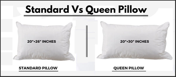 Standard Vs Queen Pillow