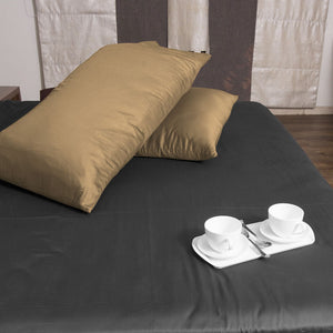 Luxury Beige Pillowcases Solid Comfy Sateen