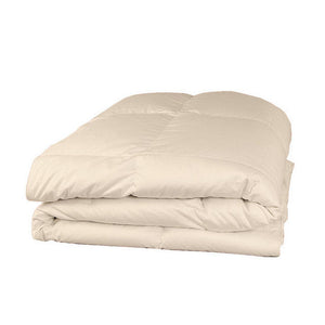 ivory twin xl comforter set