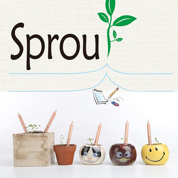 Sprouting Pencils with Plants Seeds