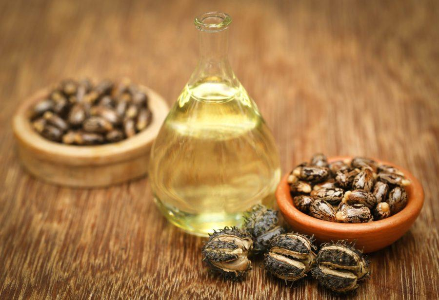 Eranda Taila: Castor Oil Benefits + Ayurvedic Uses Of Castor Oil
