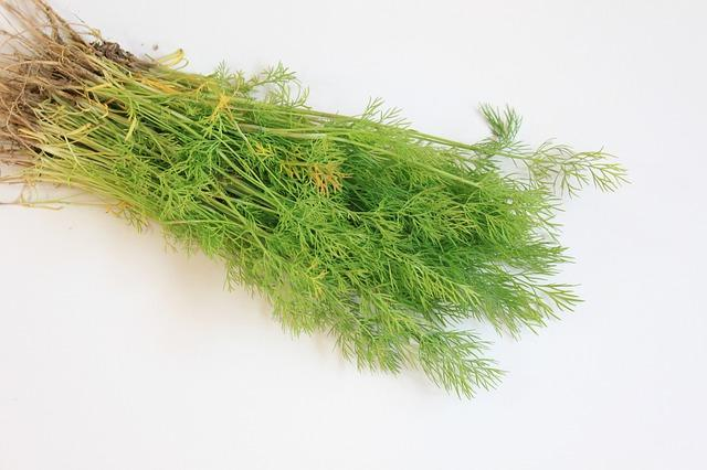 Gas & Bloating Home Remedy With Dill