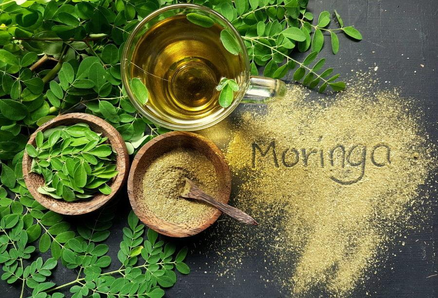 Moringa Benefits, Uses, Dosage + Ayurvedic Uses Of Moringa