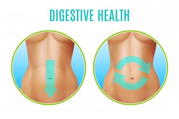 Powerful tonic for the digestive system