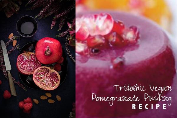 Tridoshic Vegan Pomegranate Pudding