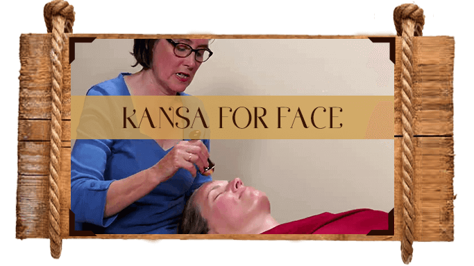 The Kansa Course - Platinum Educational Course Experience Ayurveda