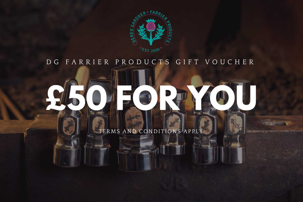 VOUCHERS: the perfect gift at Christmas