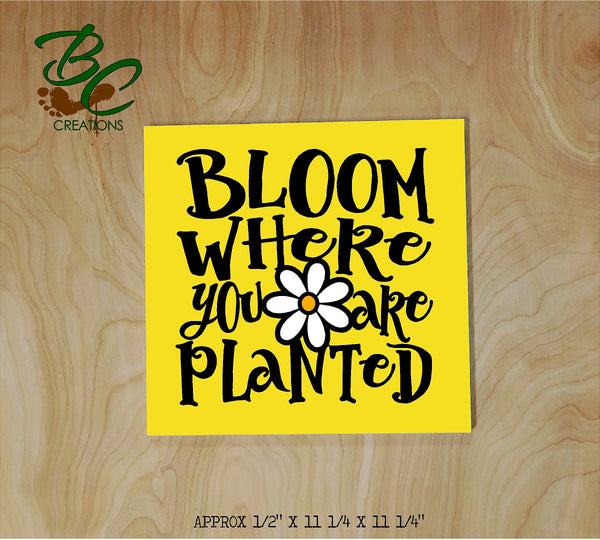 Bloom where you are planted DIY wood sign painting art kit