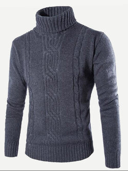 Men Cable Pattern High Neck Solid Jumper
