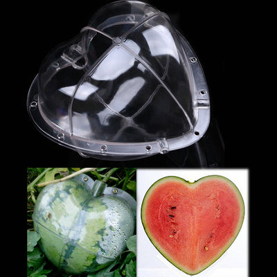 Watermelon Shaping Mold