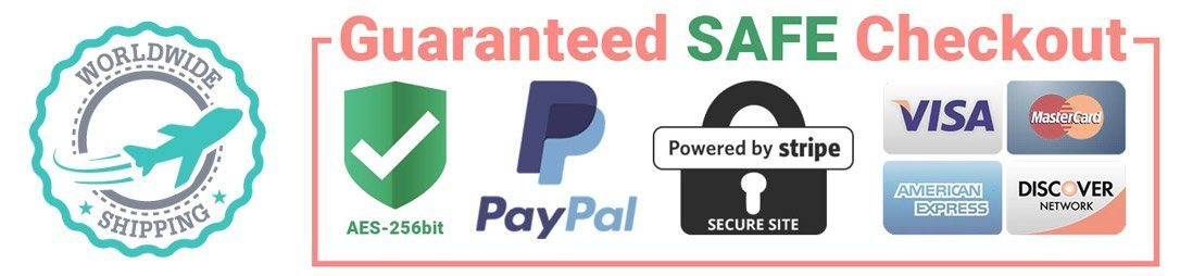 secure paypal stripe payments