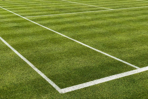Painted lines on a grass tennis court