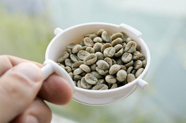 Brewing Green Coffee