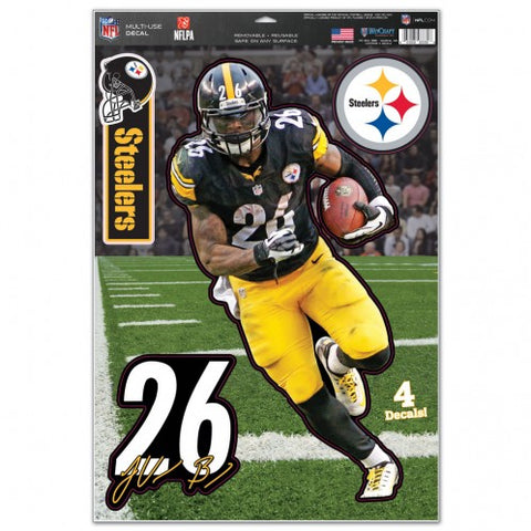 Pittsburgh Steelers Multi-Use Decal 11