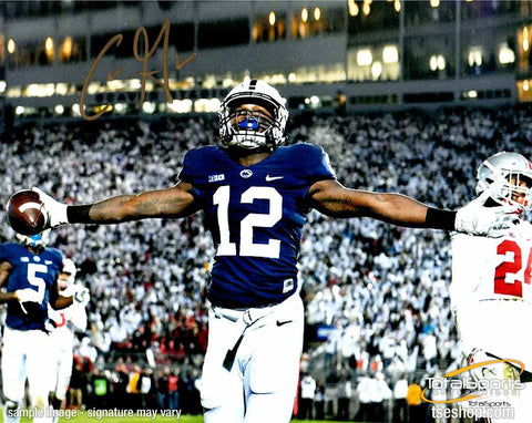 Chris Godwin Autographed Arms Out 16x20 Photo