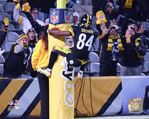 Antonio Brown Goalpost Leap - Back 16x20 Photo - Unsigned