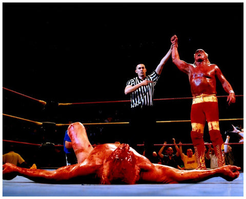 Hulk Hogan Defeating Ric Flair Unsigned 16x20 Photo