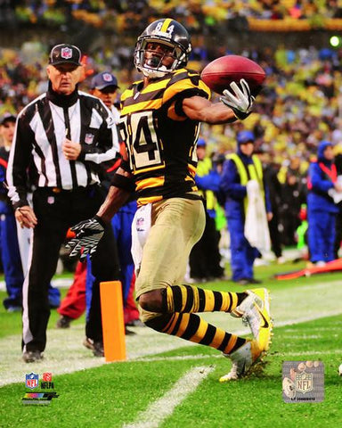 Antonio Brown One Handed Catch 8x10 Photo - Unsigned