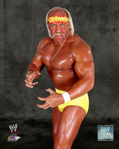 Hulk Hogan Unsigned 16x20 Photo