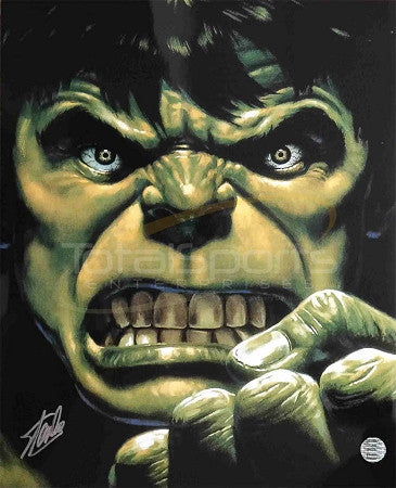 Marvel's Avengers -  The Incredible Hulk 16 x 20 Signed by Stan Lee