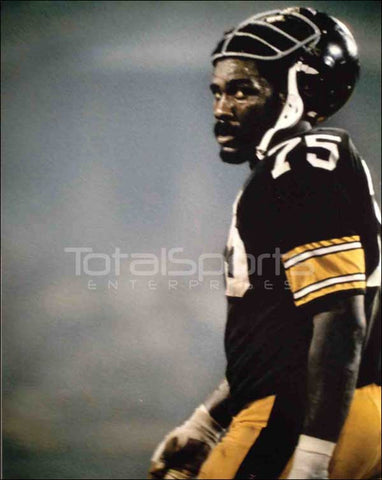 Joe Greene Helmet Back Unsigned 8x10