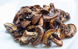 Mushrooms = Sustainable Future: Replacements for Meat, Plastic, Leather, & More... Holy Shiitake!