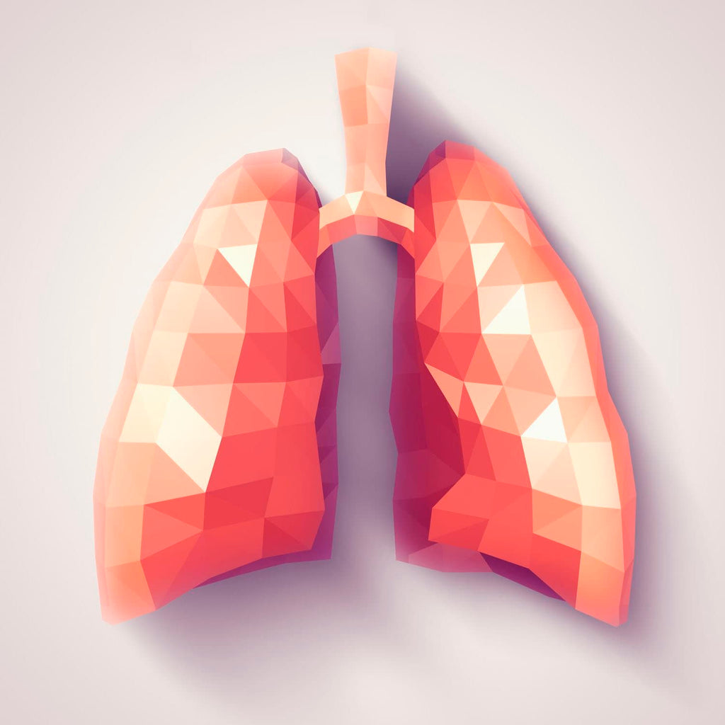 Respiratory Health: 3 Ways to Promote Healthy Lungs