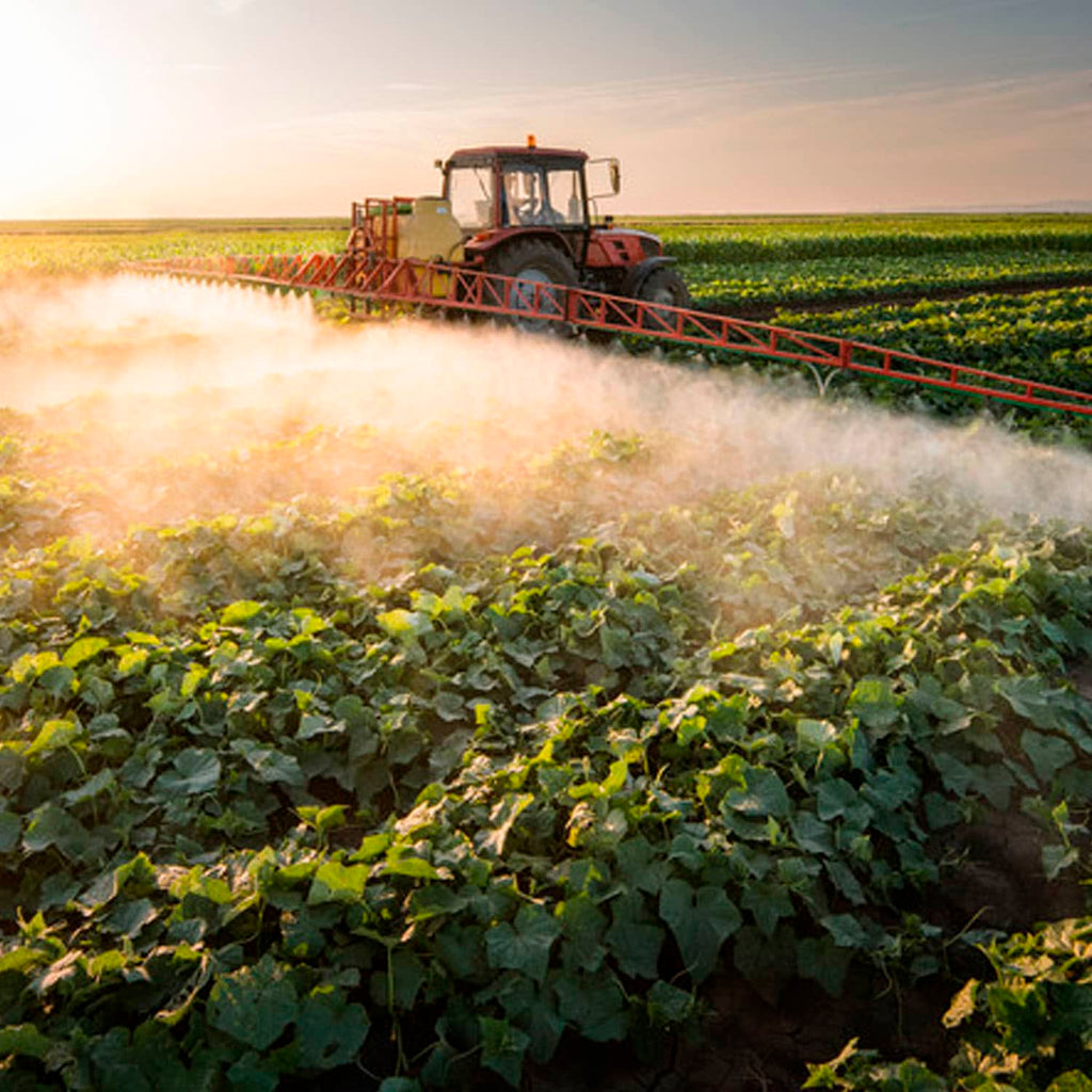 3 Harmful Effects of Pesticides. Is it worth it?