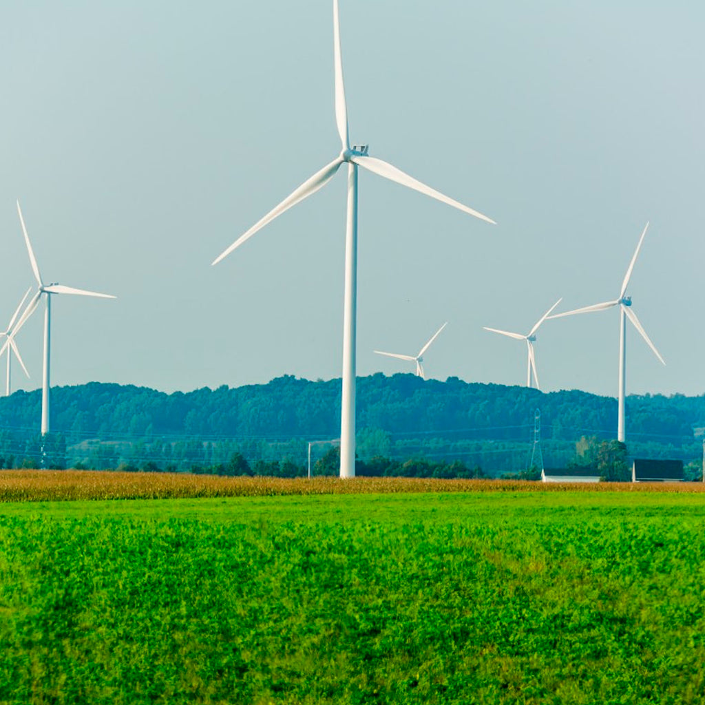 The Best Types of Renewable Energy Sources
