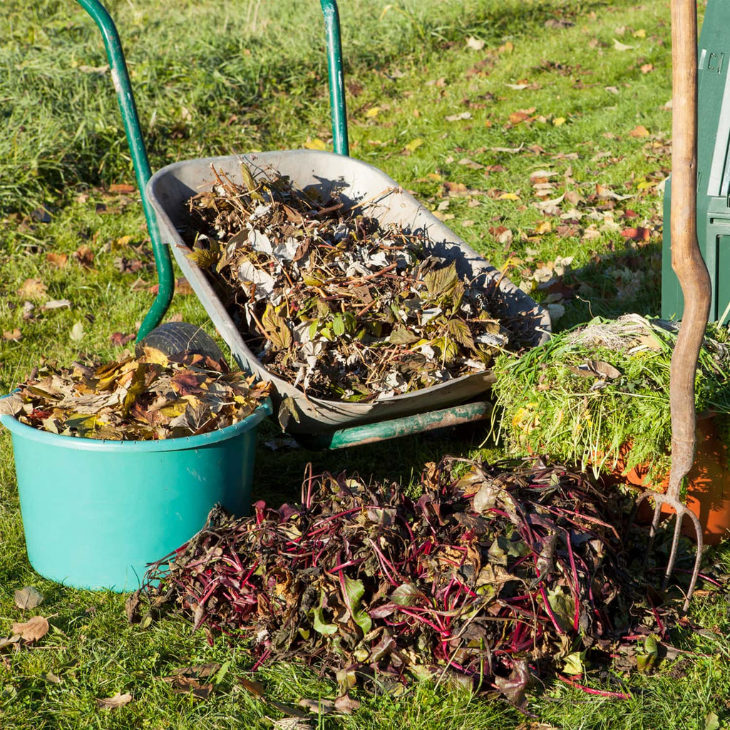 10 Organic Materials That Can Make Great Compost