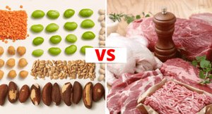 Animal Protein vs. Plant Protein: Which is More Sustainable for Your Health?