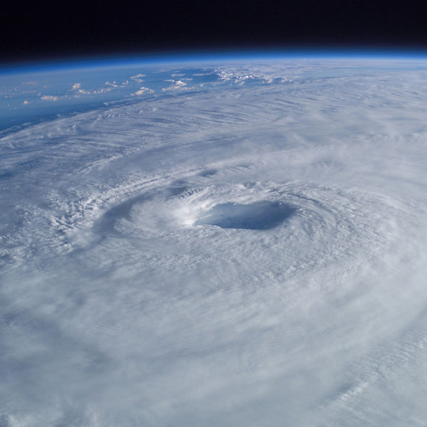 Hurricane Tips with Planet Protein's COO